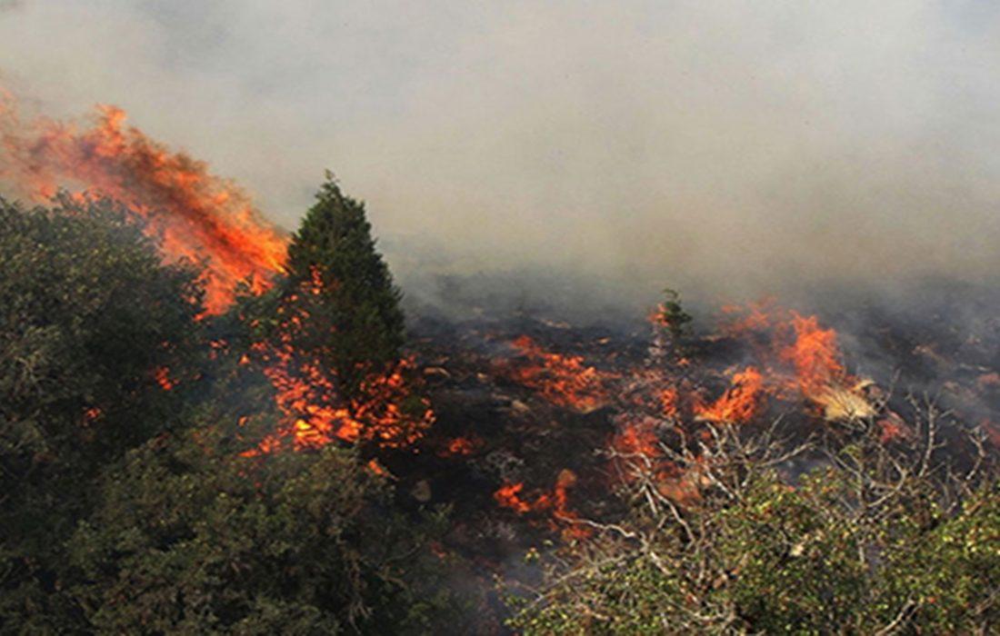 آتش سوزی در ارتفاعات دراک شیراز مهار شد