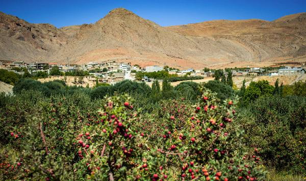 دژکرد؛ شهری بدون چاه آب شرب و کشاورزی