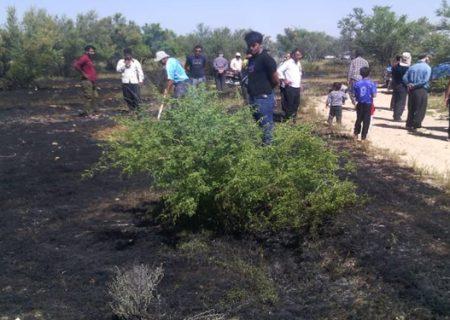 آتشسوزی در ارتفاعات سبزپوشان شیراز مهار شد