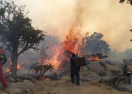 مهار آتشسوی در ارتفاعات جنگلی مهکویه فیروزآباد