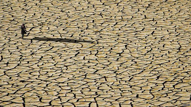 هشدار عضو شورای شهر شیراز در خصوص عواقب بیتوجهی به بحران آب و محیط زیست