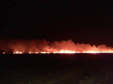 آتشسوزی شبانه در ارتفاعات پارک ملی بمو