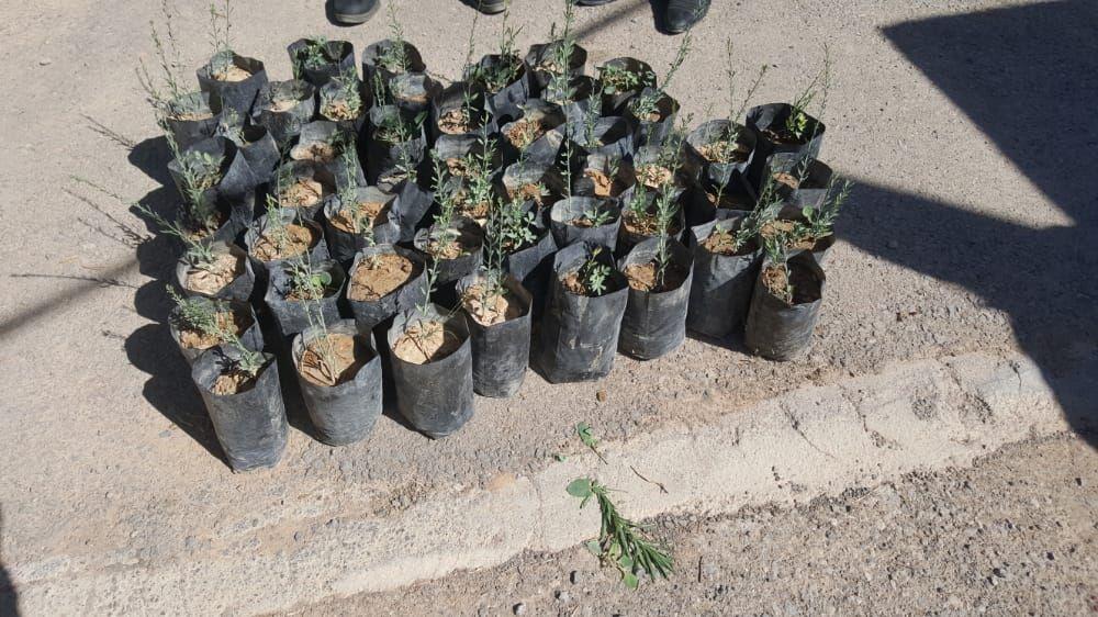 حکم متفاوت قاضی دوستدار محیط زیست در شهرستان ارسنجان