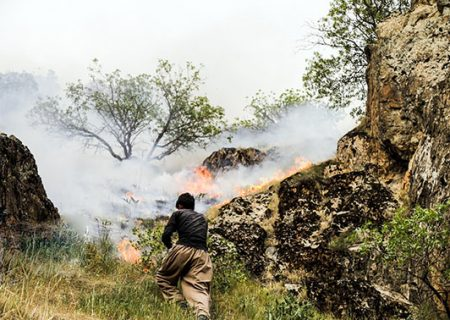 محیط زیست فارس امسال با ۲ چالش آتش سوزی و خشکسالی روبروست