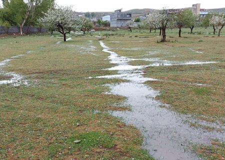 باران امسال ۶۶ درصد در فارس کمتر بارید