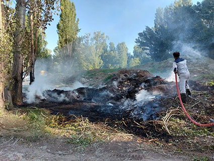 آتش سوزی به تنوع زیستی منطقه حفاظت شده مله گاله فارس زیان رساند