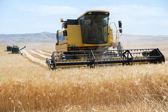 تامین امنیت غذایی در دستورکار وزارت جهاد کشاورزی است