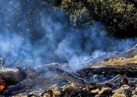 شعلههای آتش در ارتفاعات کوهمره سرخی میمند فرو نشست