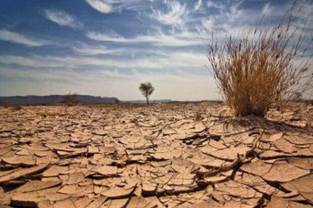 استاد دانشگاه: حل مشکلات خشکسالی نیازمند اراده و عزم جدی است