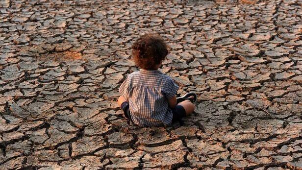 فارس بیشترین آسیب را در کشور از خشکسالی دید