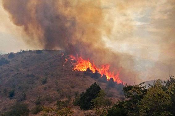 آتش در طبیعت سه شهرستان فارس مهار شد
