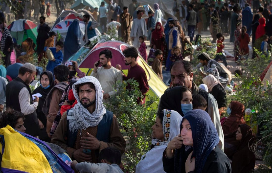 ۴۸۱ پناهجوی افغان رها شده در ارتفاعات لارستان نجات یافتند