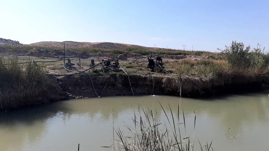 ماموران و همیاران محیط زیست فارس،ماهیان را در رود قرهآغاج رها کردند