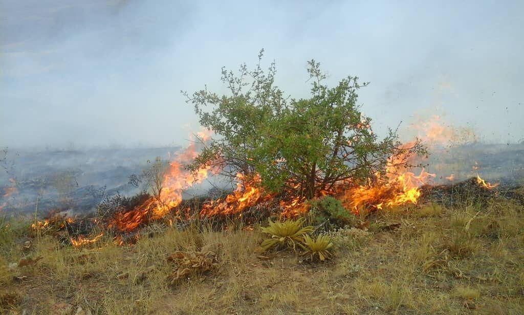 آتشسوزی در ارتفاعات خفر فارس مهار شد