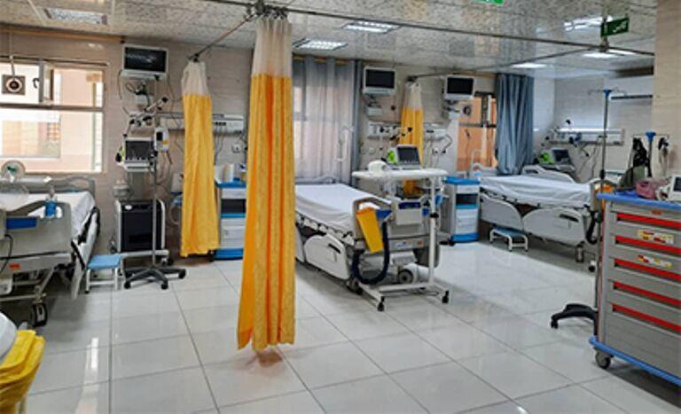معاون علوم پزشکی شیراز : قارچ سیاه واگیردار نیست و نگرانی ندارد