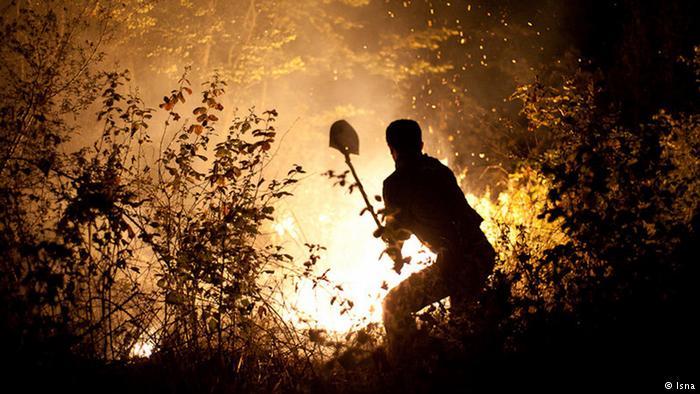 150 هکتار از جنگلهای شوش در آتش سوخت