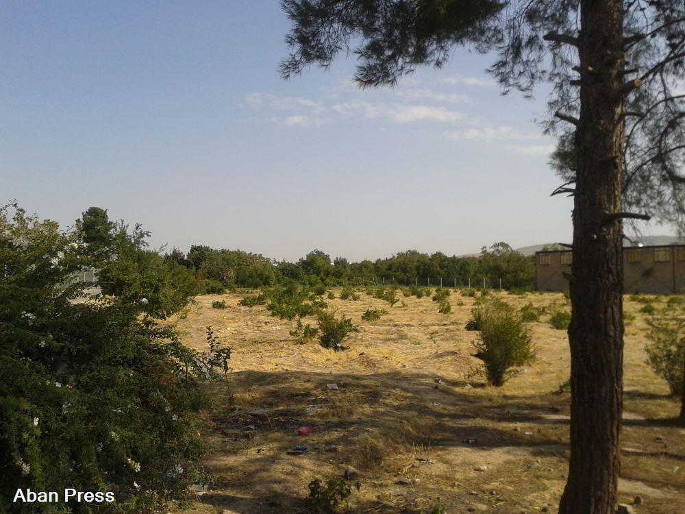 احتمال تخریب و تغییر کاربری یکی از باغات قصردشت شیراز برای ساخت حوزه علمیه
