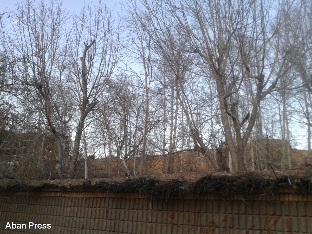 تلاش برای تخریب بخشی از یک باغ در شیراز و احداث هتل ۴۵ طبقه