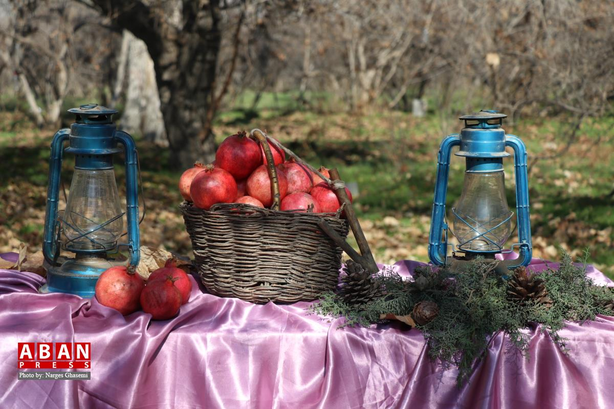 زمستان در باغهای قصردشت شیراز