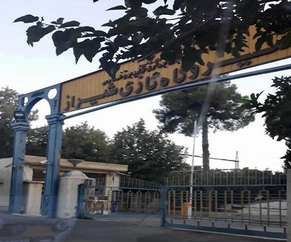 نویدهای تازه برای بهینهسازی نیروگاه گازی شیراز