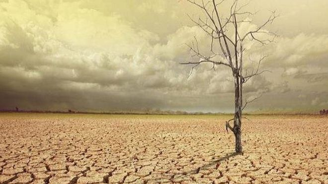 پیشبینی فصلی کم باران برای محیط زیست ایران
