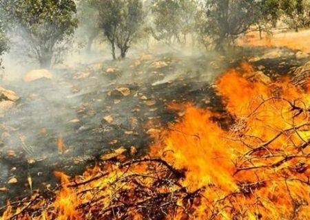 آتش ریههای فارس را میسوزاند