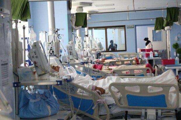 رئیس دانشگاه علوم پزشکی شیراز: سن ابتلا به کرونا کاهش یافته است