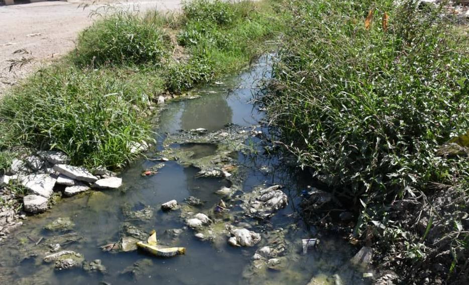 استفاده از فاضلاب برای آبیاری مزارع در شیراز