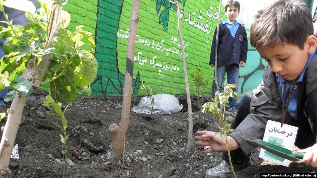انتقاد استاندار فارس از تعطیلی مدارس طبیعت
