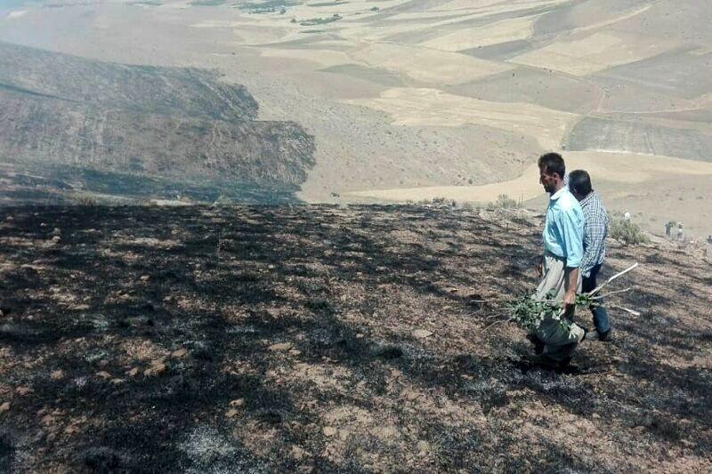 مهار آتش سوزی در کوههای میشوان شیراز