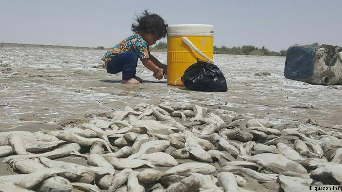 آمار تکاندهنده: ۹۷ درصد مساحت ایران در معرض خشکسالی است
