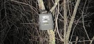 نماینده مجلس: با دوربینهای محیط زیستی نمیتوان اطلاعات امنیتی به دست آورد