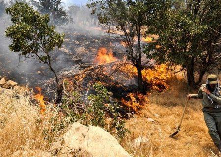 مهار آتشسوزی در مزارع افزر فارس