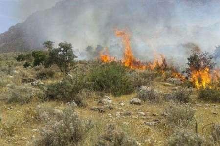 آتشسوزی در عرصههای طبیعی فارس