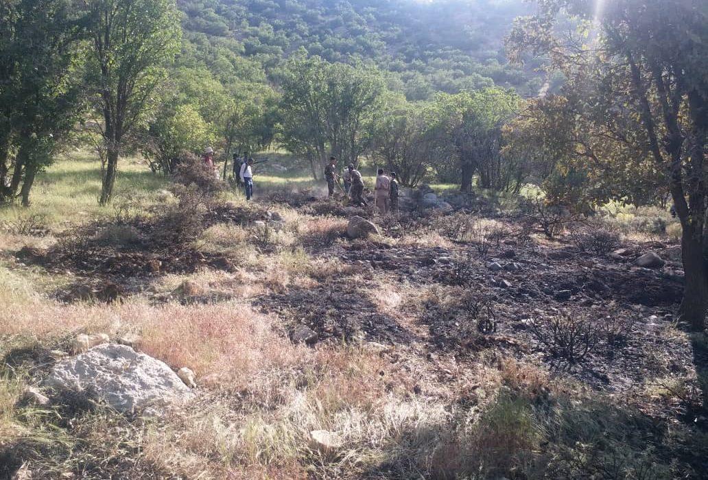 آتش سوزی در ارتفاعات چشمه غورهدان بیضا