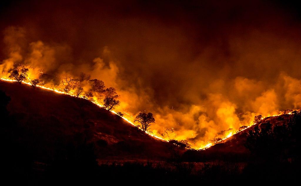 ۱۸ مورد آتشسوزی در منابع طبیعی فارس طی ۳ روز