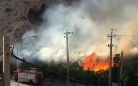 آتشسوزی همزمان چندین نقطه در شیراز