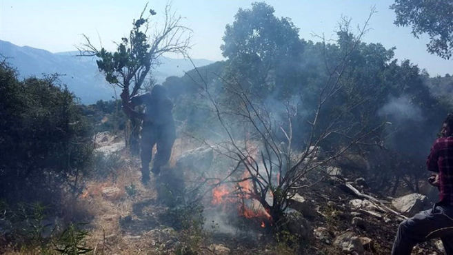 مهار آتشسوزی در کوه سپیدار فارس