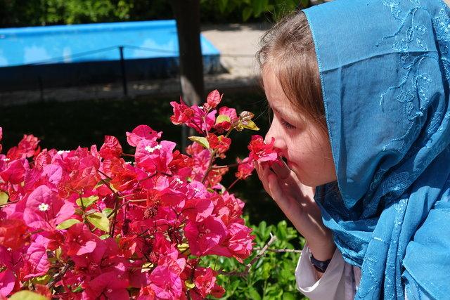 نمایش مستندی در خصوص سفر دختر ۱۰ ساله آلمانی به شیراز