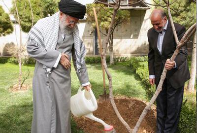 آیت الله خامنهای: مسئولان مانع از بین رفتن درختان در شهرها شوند