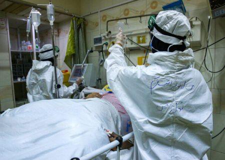 افزایش بستری بیماران کرونایی در فارس
