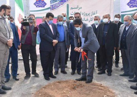 آغاز ساخت کارخانه جدید روغن نباتی در شیراز