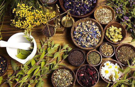 آنتیویروسهای گیاهی برای بدن