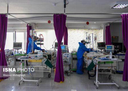 بستری شدن ۲۹۶ بیمار کرونایی در فارس طی یک روز