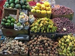 پرورش میوههای لوکس استوایی در داراب