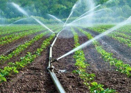 برگزاری دورههای بهره وری کشاورزی در مرودشت