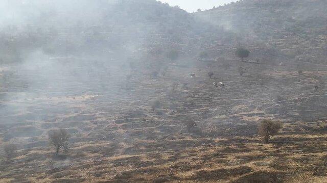 مهار آتش سوزی منطقه مروارید داراب
