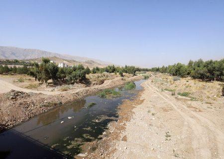آمادگی شورا و شهرداری شیراز برای حل بحران چنارراهدار