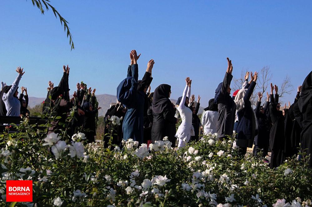 آلبوم عکس؛ پیاده روی ورزشی ویژه بانوان کارمند در شیراز
