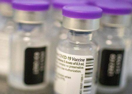 همه چیز درباره واکسن کرونا و واکنش بدن به آن؛ واکسینه شویم یا نه؟